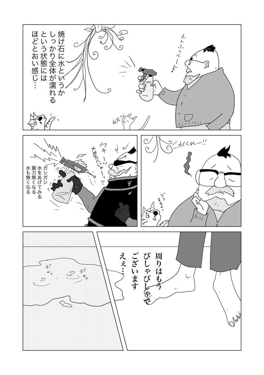 tillandsia-duratii-mizuyari-_002