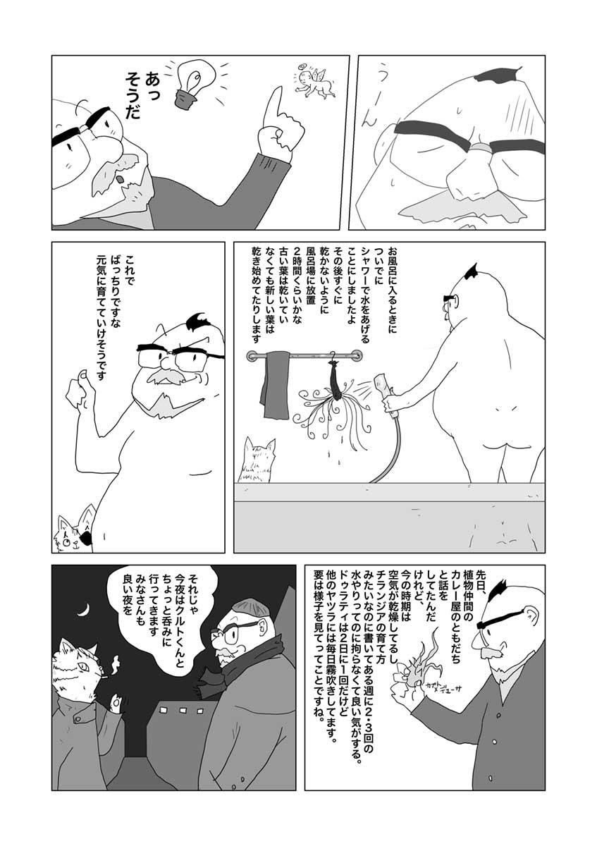 tillandsia-duratii-mizuyari-_003